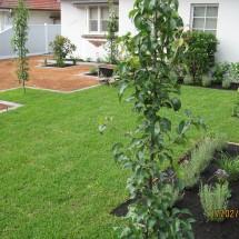 Landscaping {SuburbName}