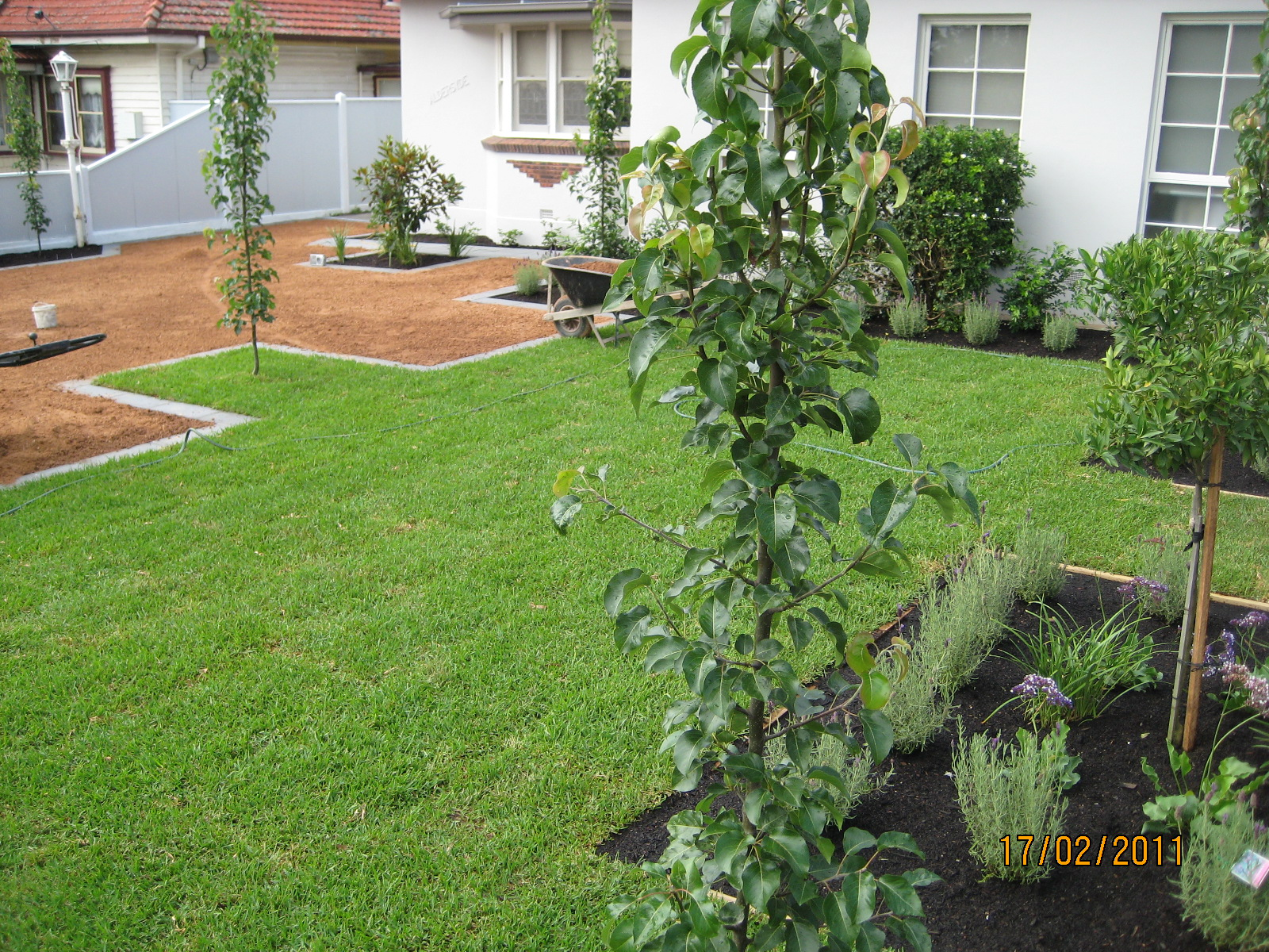 Landscaping Darling South